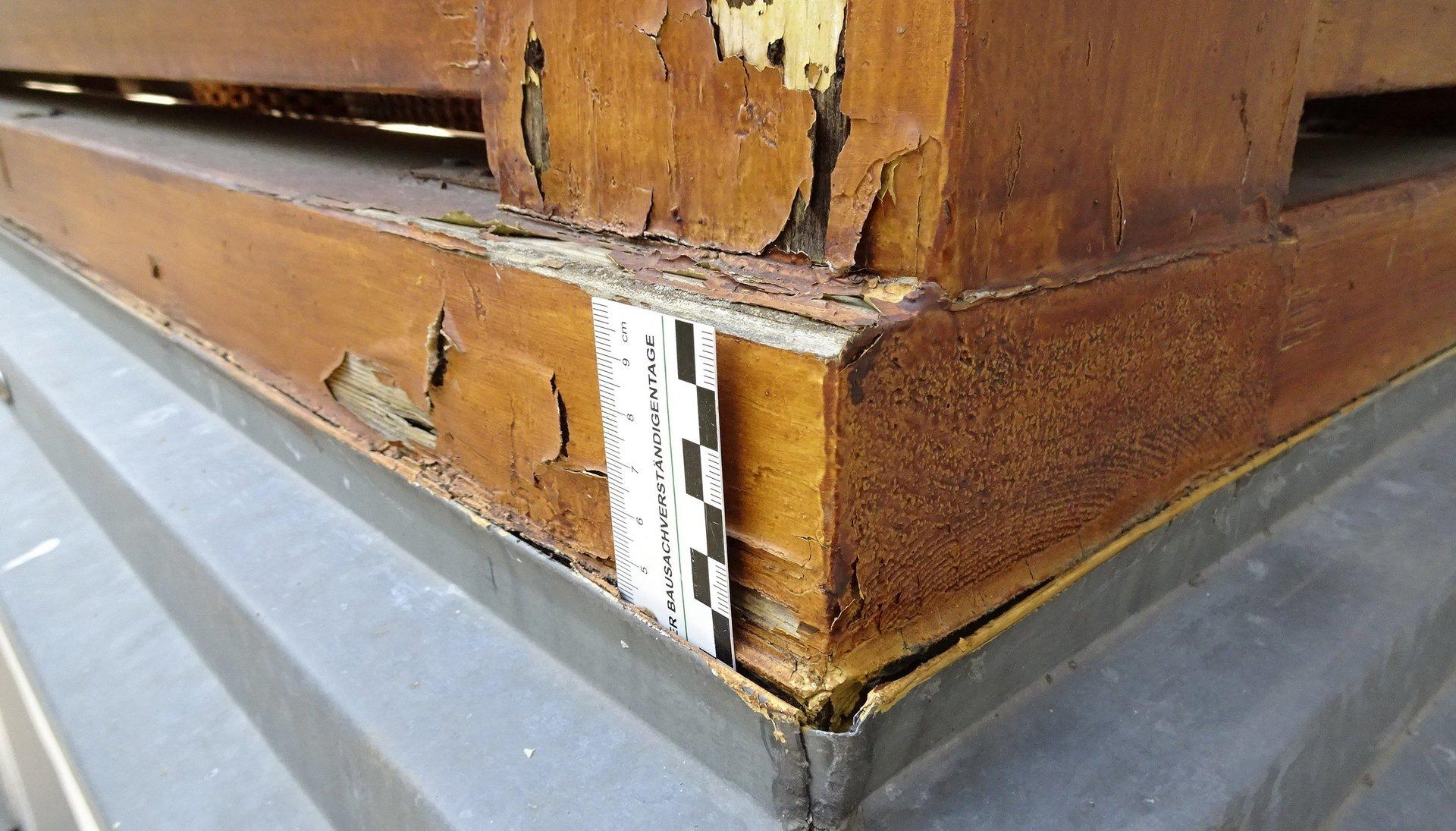 Fußschwelle Holzbalkon Schaden an einer Fußschwelle, Regenwasser nicht ablaufen konnte, die Blechverkleidung hat den Schaden beschleunigt