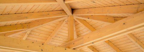 Holz & Holzschutz